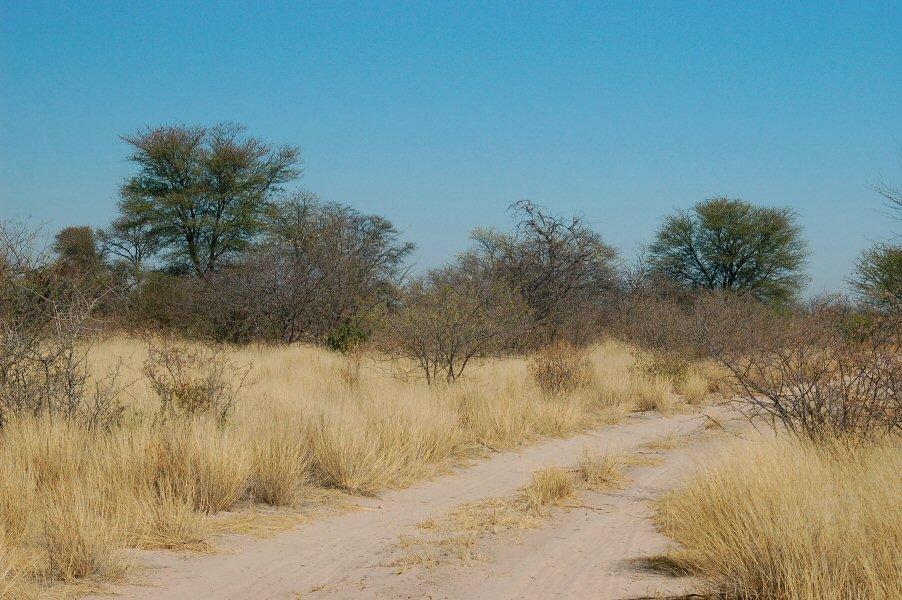 09-12_03-00-06 roadside - explorationvacation