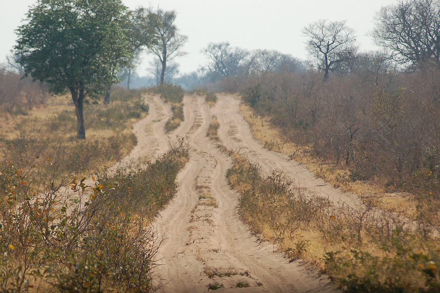 Botswana - ExplorationVacation 09-24_02-00-37 road into Chobe
