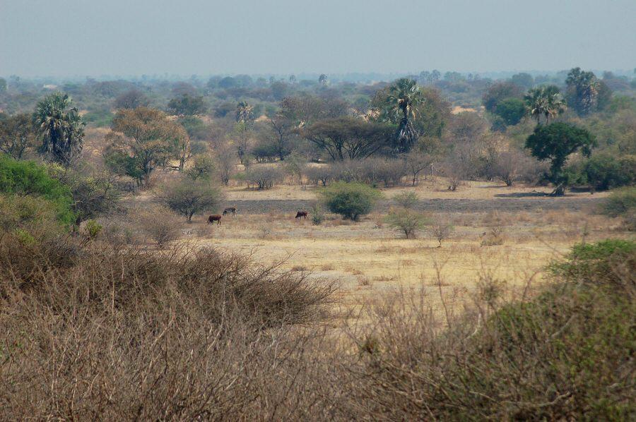Botswana - ExplorationVacation 09-24_03-28-35 valley near village