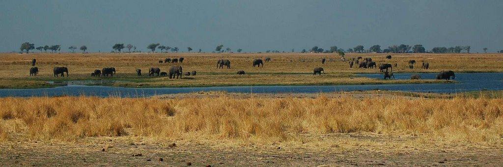 Botswana - ExplorationVacation 09-24_08-59-20 elephant pan