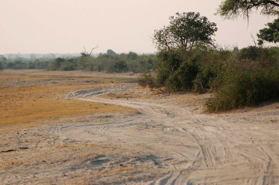 Botswana - ExplorationVacation 09-25_00-21-18 river edge