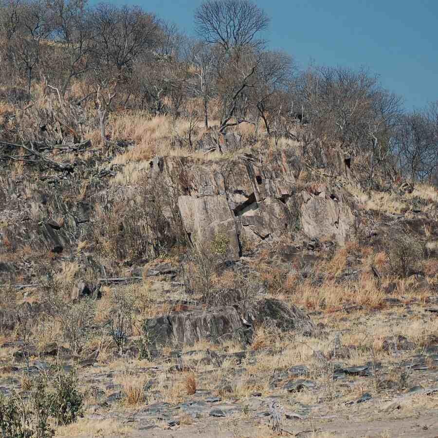 Botswana - ExplorationVacation -2005-09-23_03-13-55 hillside on return