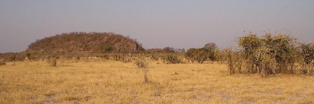 Botswana - ExplorationVacation - P1010140 Savuti hills