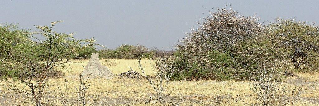 Botswana - ExplorationVacation -P1010150 end of the tour