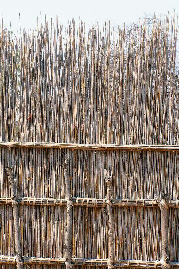 Botswana - ExplorationVacation P1010167 fencing