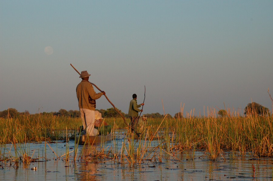 Botswana Okavango - ExplorationVacation - 09-18 mekoro