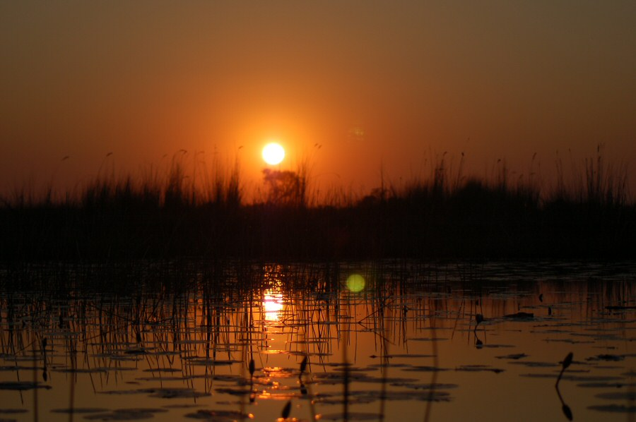 Botswana Okavango - ExplorationVacation - 09-18 sunset
