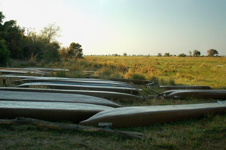 Botswana Okavango - ExplorationVacation - 09-18 waiting mekoro