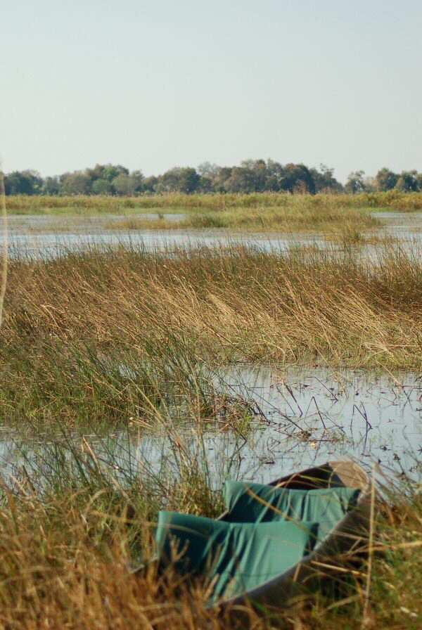 Botswana Okavango - ExplorationVacation - 2005-09-18_mokoro by camp