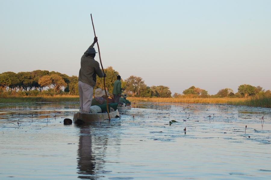 Botswana Okavango - ExplorationVacation - leaving in mokoros