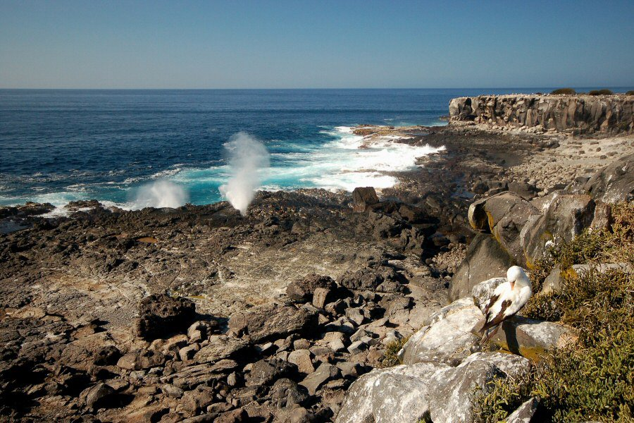 Galapagos Islands blow hole and shore