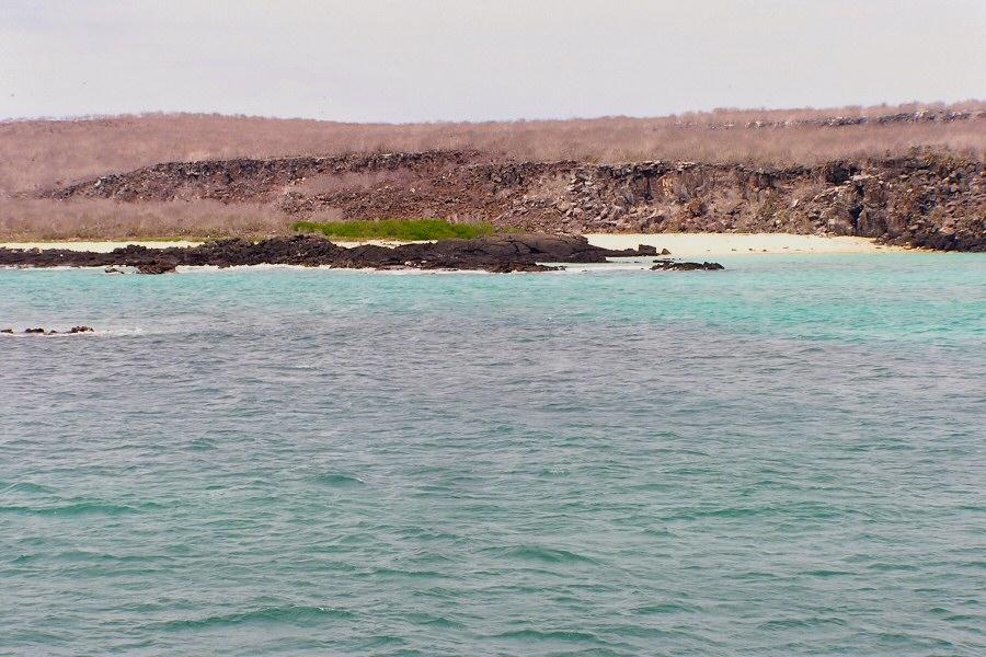 Galapagos Islands - ExplorationVacation P1010076