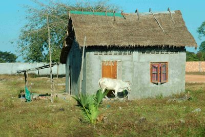 rural farmhouse in Cambodia