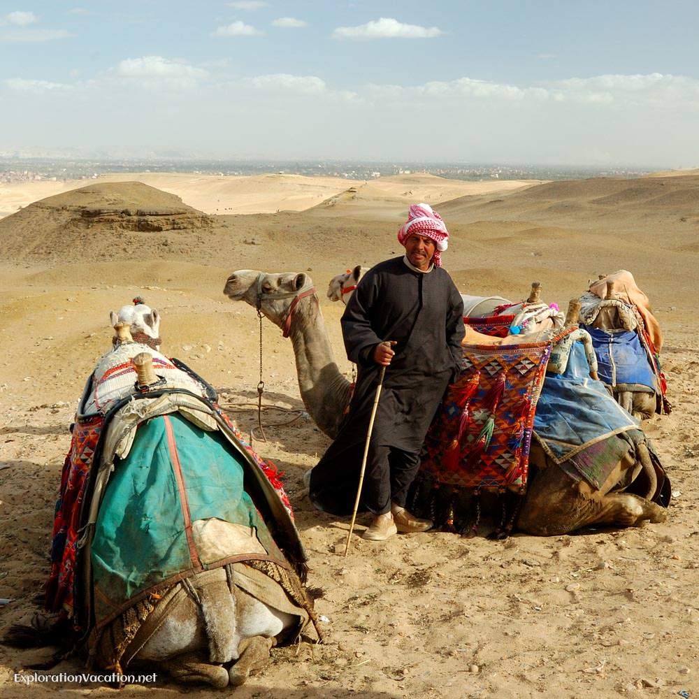 camels and driver