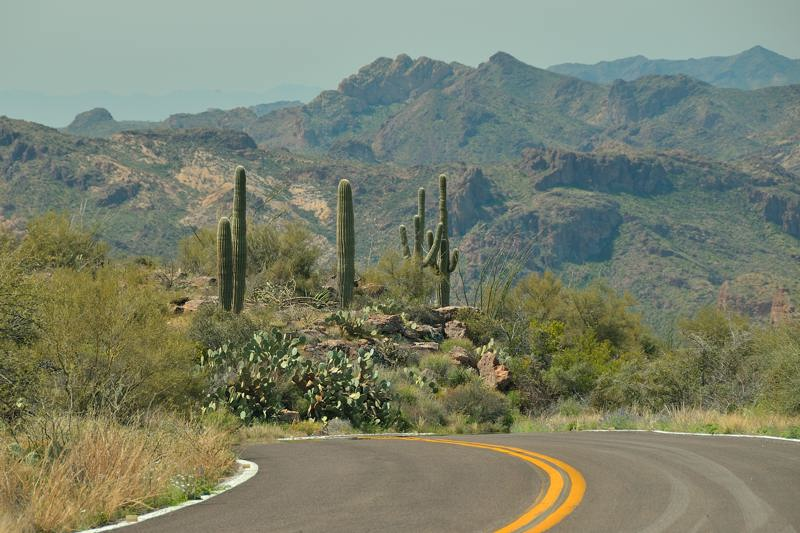 Apache Trail with saguaros Arizona - www.ExplorationVacation.net