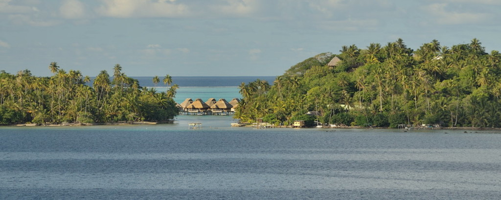Bora Bora reef