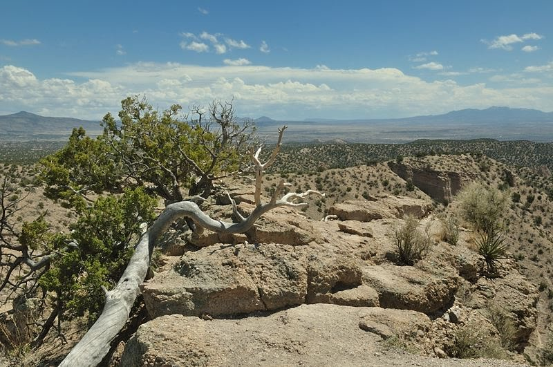 vistas from the Canyon Trail