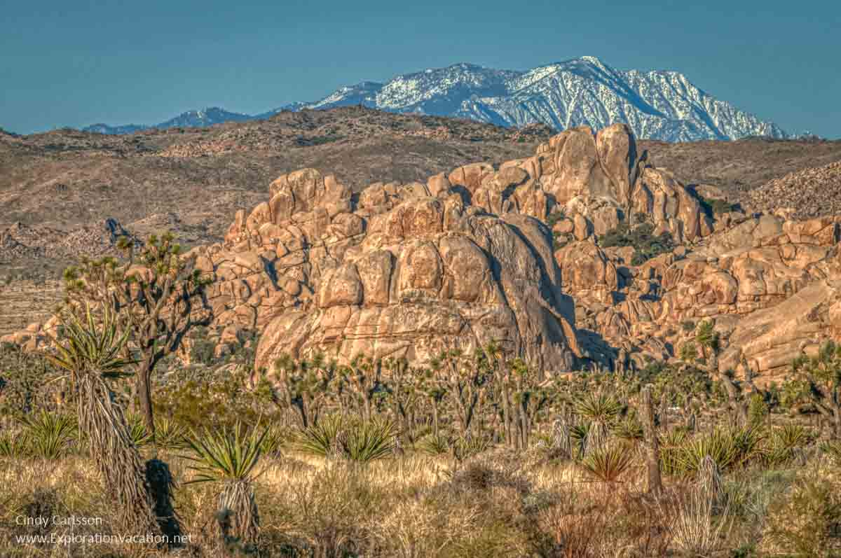 landscape with mountains at Joshua Tree National Park