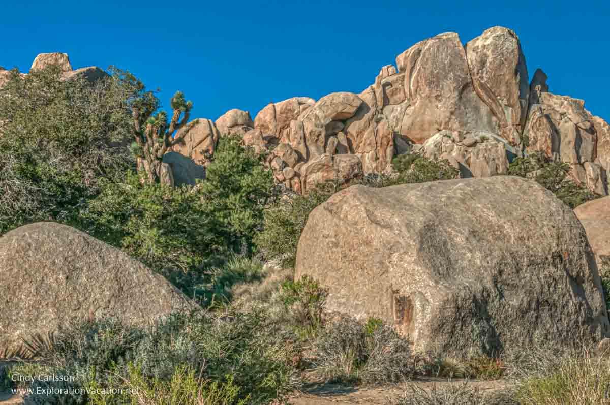 boulders in Joshua Tree National Park