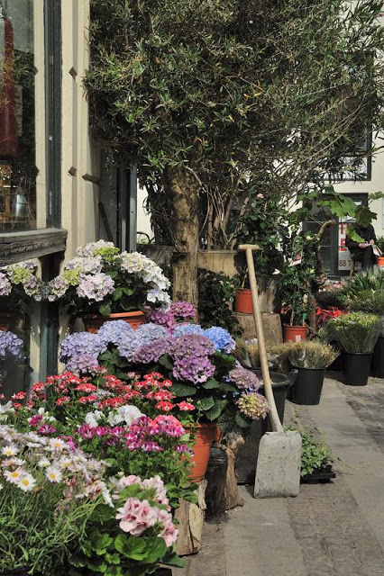 Flowers for sale near Copenhagen's Round Tower - ExplorationVacation.net 1-DSC_2165
