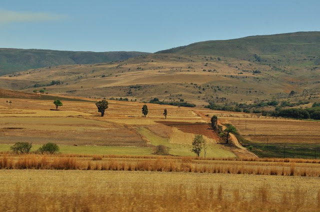 Fields along the road in South Africa - ExplorationVacation.net