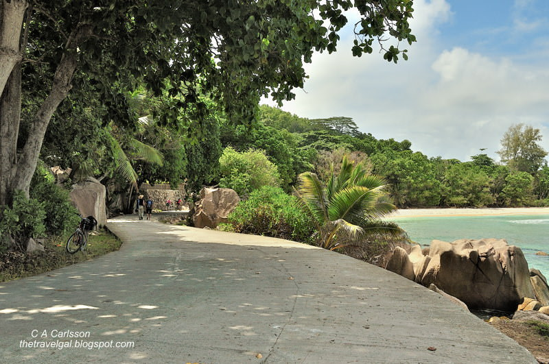 road along beach
