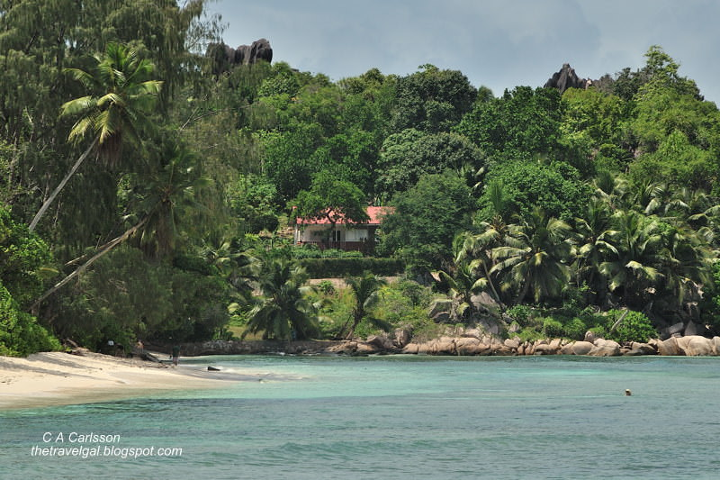 homes along a tropical beach