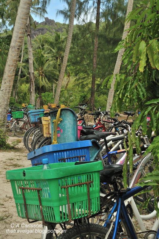 long row of bikes