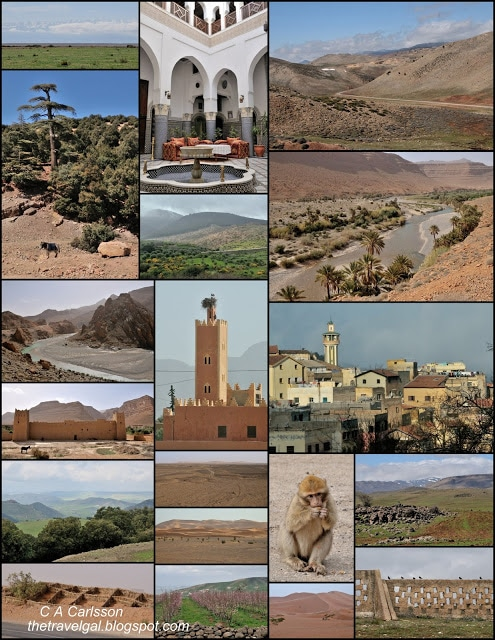 Collage of architecture and deserts