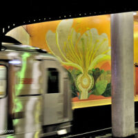 colorful flower painting and train