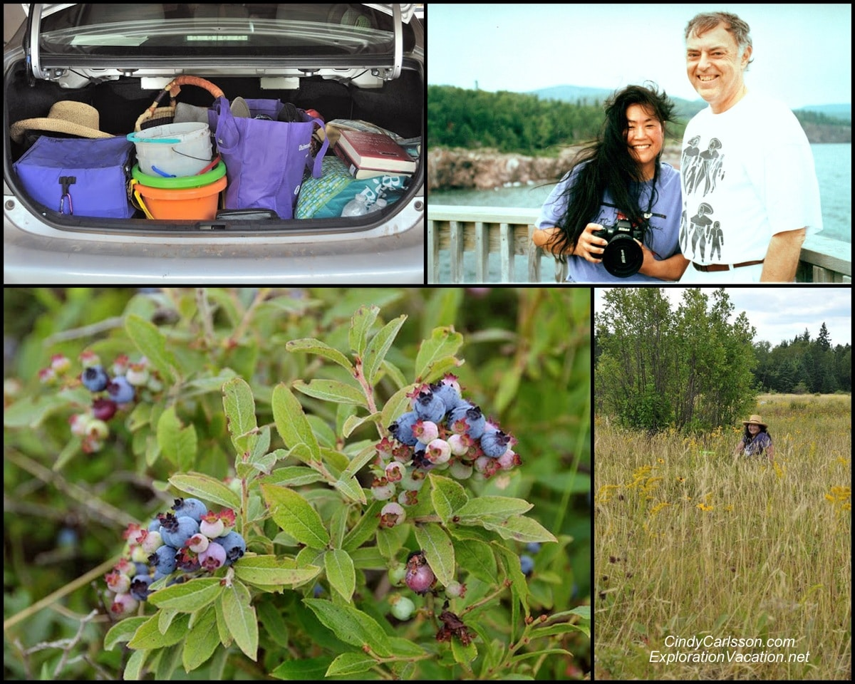 collage of pictures of berries, buckets and people
