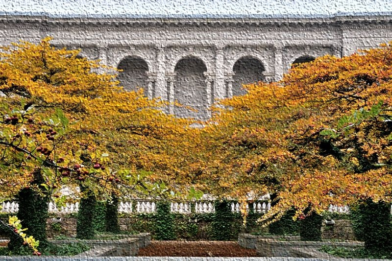 Chicago Art Institute in fall