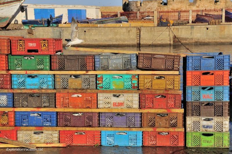 Essaouira fish market 32 DSC_8246 Morocco