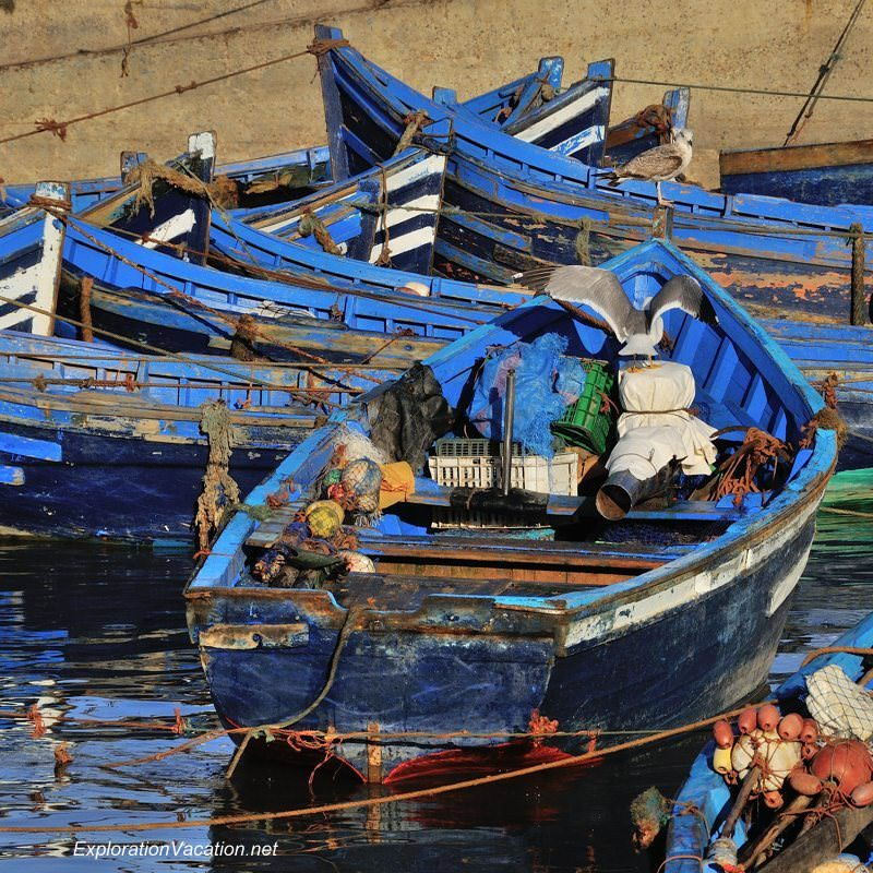 blue fishing boats in Essaouira Morocco