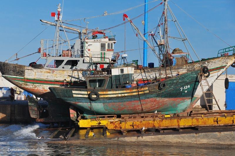 Essaouira fishing 4 DSC_2175 Morocco