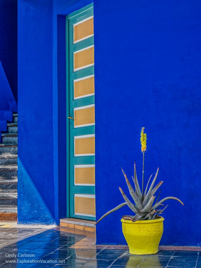 blue and yellow at majorelle garden marrakech morroco