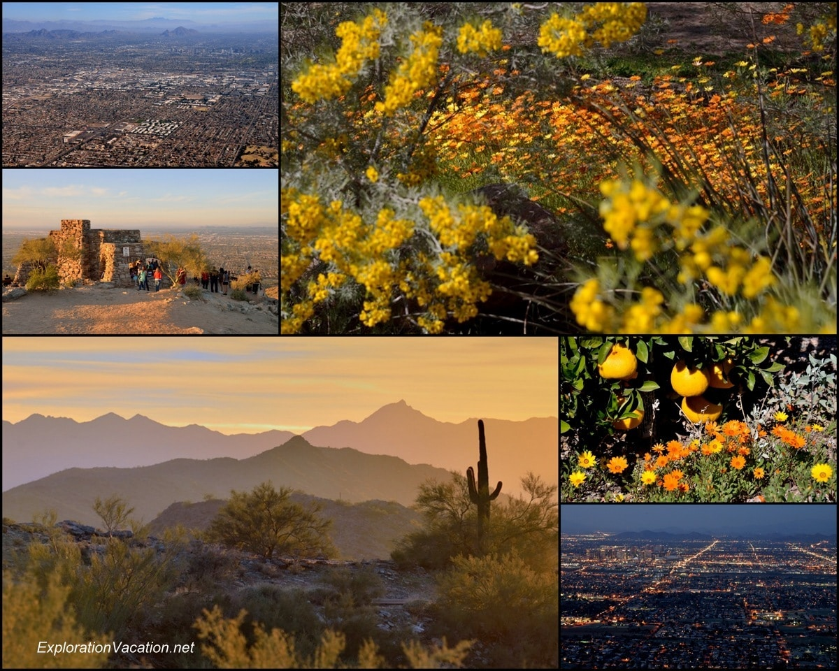 collage of flowers, mountains, and overview of Phoenix