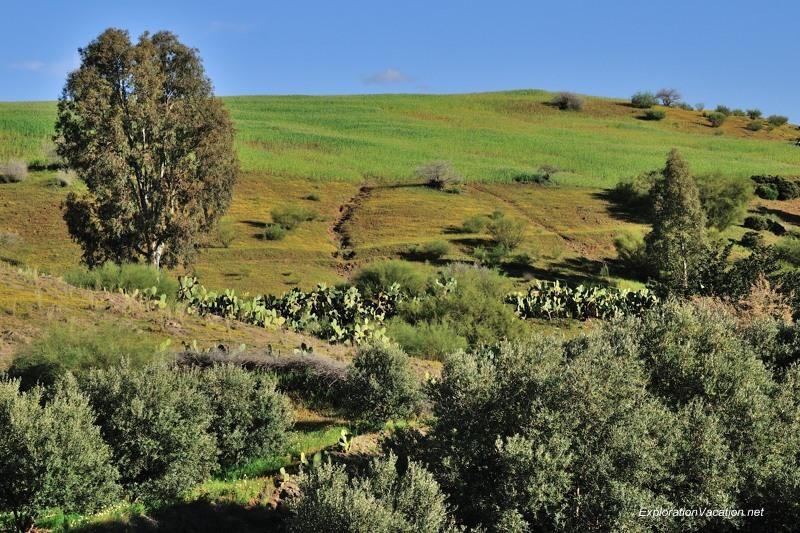 DSC_6267 rural landscape east of Marrakech 8