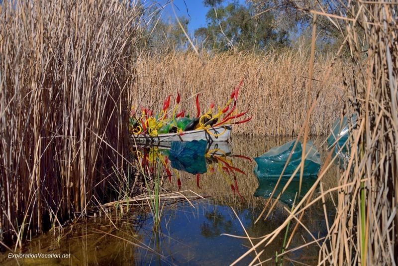 Chihuly at the Desert Botanical Garden Phoenix Arizona 20140217-DSC_6269