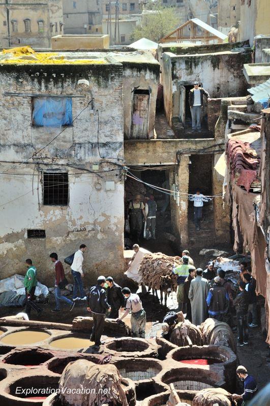 Tannery in Fes Morocco -12 DSC_1725