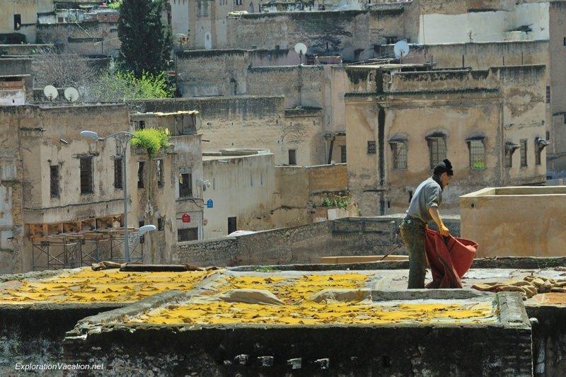 Tannery in Fes Morocco -18 DSC_1667