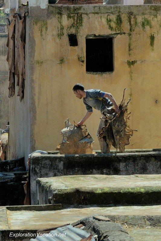 Tannery in Fes Morocco -19 DSC_1748