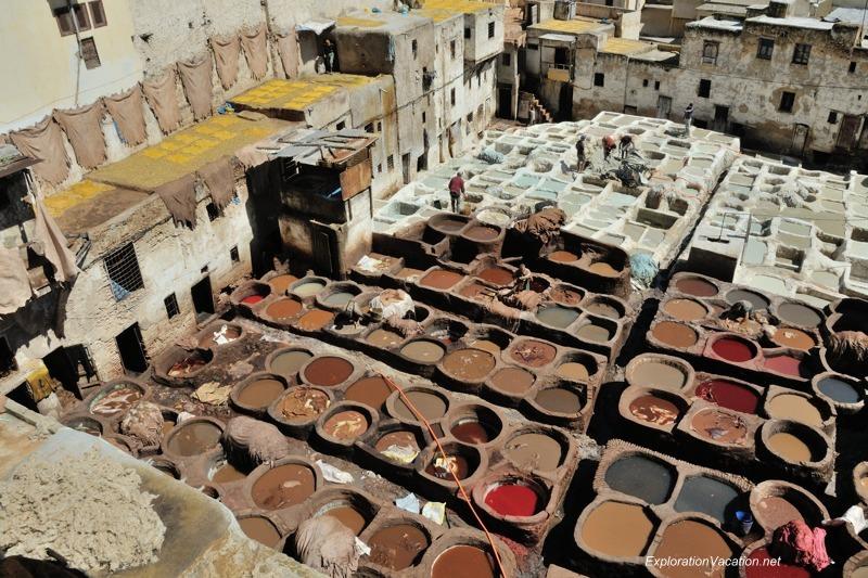 Tannery in Fes Morocco -20 DSC_1688