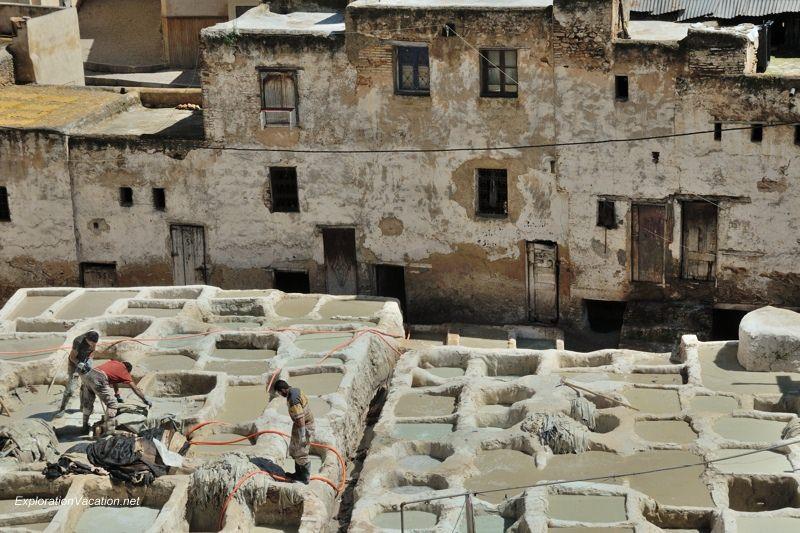 Tannery in Fes Morocco -22 DSC_1704
