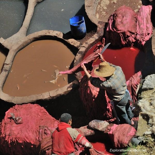 Tannery in Fes Morocco -28 DSC_1664