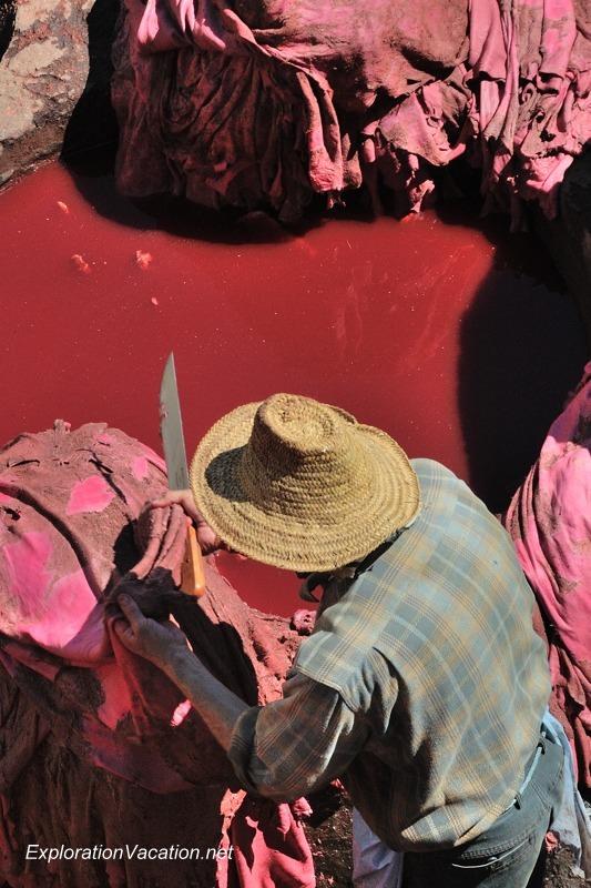 Tannery in Fes Morocco -30 DSC_1742