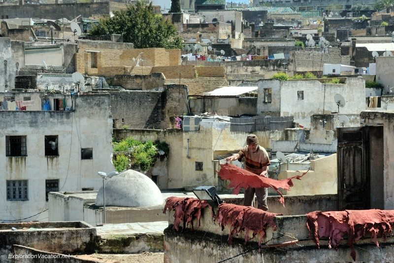 Tannery in Fes Morocco -32 DSC_1753