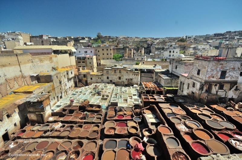 Tannery in Fes Morocco -8 DSC_1676
