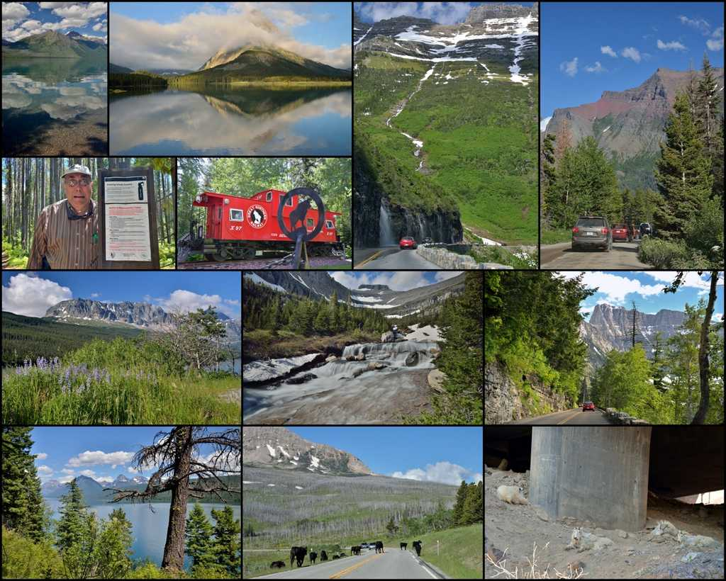 collage of scenery from Glacier National Park