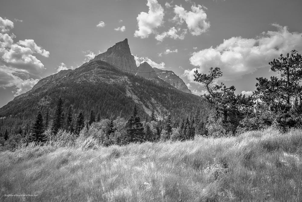 Hiking Red Rock Canyon and Blakison Falls Waterton NP Canada 7 20140713-DSC_3488BW